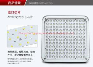 Montaje en superficie LED Anti-Explosion Lámpara de techo/Iluminación de la Gasolinera Gasolinera Estación de Metro