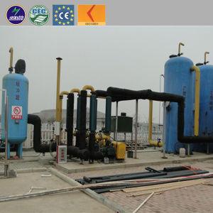 Le traitement de l'eau Wsate biogaz 1000KW générateur de biogaz