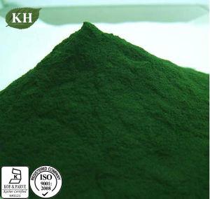 Suplemento nutricional Spirulina em pó Protein 60% Grau alimentício