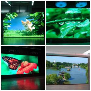 P3 HD pleine couleur intérieure Affichage LED avec large angle de vue