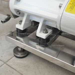 높은 점성 쌍둥이 나선식 펌프, 두 배 나선형 펌프, 액체 펌프
