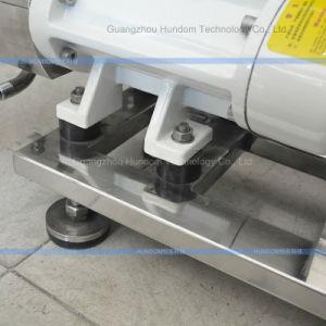 Leistungsfähige Edelstahl-Zwilling-Schrauben-Pumpen-Doppelt-Schrauben-Übergangspumpe