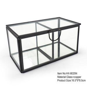 Doos de van uitstekende kwaliteit van de Opslag van de Juwelen van het Kristal van het Glas met Twee Compartimenten