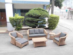 Pátio com jardim Wicker / verga Conjunto Sofá - Mobiliário de exterior (LN-3029)