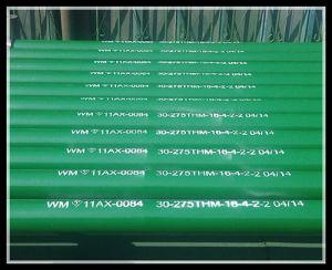 유전을%s 배관 Pump 30-275thm