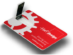 USB della carta di credito del biglietto da visita di stampa di colore completo