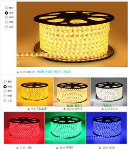 Luz LED de 230V/110V UL5050 SMD LED Tira de leds
