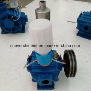Glisser la pompe à vide rotative à ailettes pour machine à traire