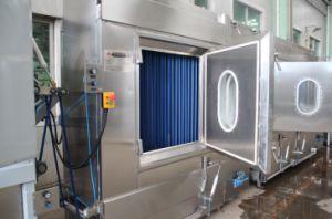 Économique des rubans de polyester de finition de teinture continu&Machine avec certificat CE