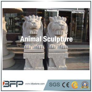 Het natuurlijke Dierlijke Beeldhouwwerk/het Standbeeld van de Steen van het Graniet voor het Ornament van de Tuin