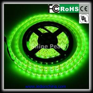 Indicatori luminosi di nastro di illuminazione del CREE LED di buona prestazione SMD 5050