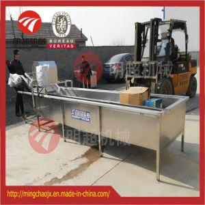 野菜フルーツのサーフの洗浄ライン産業ブルーベリーのクリーニング機械