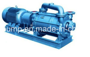 Non Corrosive Water Ring Vacuum Pump Used per Papermaking Industry
