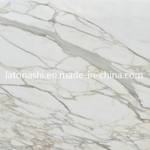 calacatta golden marbre sol en marbre blanc italien tuile pour la cuisine calacatta golden. Black Bedroom Furniture Sets. Home Design Ideas