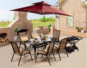 Im Freien/Rattan/Garten/Patio-/Hotel-Möbel Texilene Tuch Chair& Tisch stellte ein (HS 2010C &HS715096ADT)