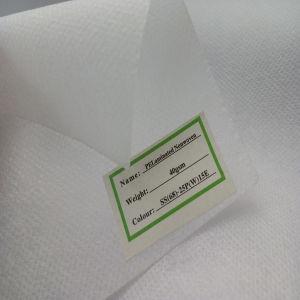 Tessuto ignifugo del tessuto non tessuto dei pp
