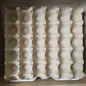 tabuleiro de ovos de papel de baixo preço da máquina para a Tanzânia
