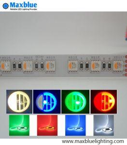 5050SMD 4-en-1/LED DE 84M 24VCC RGBW TIRA DE LEDS