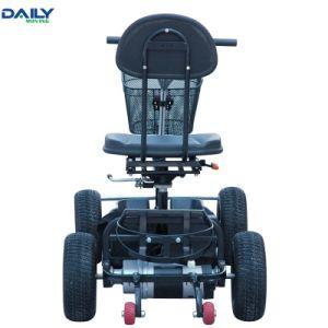 Marcação único Banco Eléctrico de Dobragem fácil carrinho de golfe com 24V motor de 1000 W