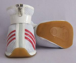 OEM Les animaux de compagnie de chaussures de mode de haute qualité