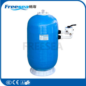 Swimmingpool-Geräten-Wasser-Filter