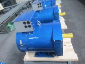 Jinlong 10kwはベアリングブラシの交流発電機を選抜する