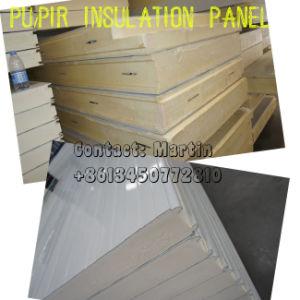防火効力のあるの冷蔵室BuldingのためのPIRの冷蔵室のパネル