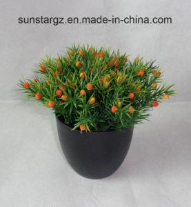 PE Hedyotis травы W/фрукты искусственные завод в черный котел для дома (50129)