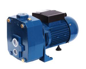 Dp-1100 Strahlpumpe-elektrischer Standardhaushalts-selbstansaugende Strahlen-Wasser-Pumpe