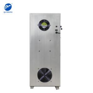 trattamento delle acque del depuratore di acqua dello sterilizzatore dell'ozono di 50g 60g