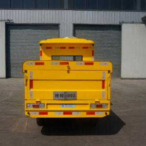 A fábrica fez Zhongyi Tipos personalizados de carro eléctrico/camião/autocarro/