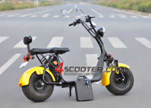 Puissante batterie lithium haute vitesse Scooter Citycoco avec la CEE et le COC