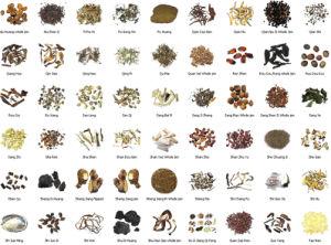 Zlpgの中国のハーブまたは魚またはルート薬のエキスの乾燥オーブン