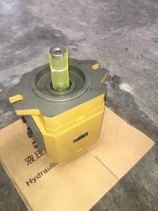 Rexroth Pgh hydraulische Zahnradpumpe-Kolbenpumpe Pgf2-22.008 für Exkavator
