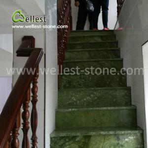 台所洗面所の居間のための素晴らしいポーランドの緑の大理石の築壁の床タイル