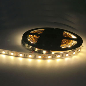 Indicatore luminoso di striscia poco costoso luminoso eccellente di 5050 SMD LED 24V