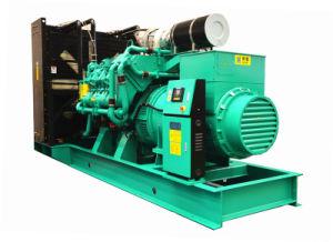 50Hz 800kw Googol Engine Fuel Mixed Generator Set Gas Diesel
