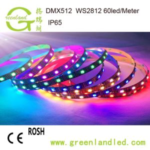 30LED/Meter IP67 12V Ws2811 IC 5050 SMDプログラム可能なLEDのストリップ