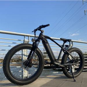 250W Fat Tire Snow Mountain vélo électrique