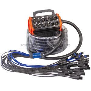 Femelle XLR vers XLR mâle stade serpent avec une boîte de câble