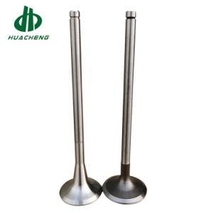El gasóleo de la válvula de entrada y salida de piezas de repuesto para 6D155