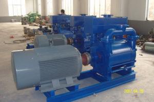 2be de Vacuümpomp en de Compressor van de Ring van het water