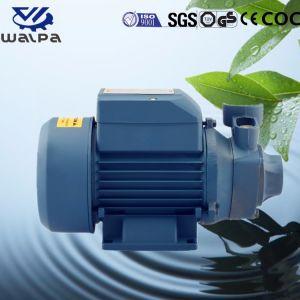 Eléctrico monofásico de 65m de la bomba de agua potable con precios más bajos