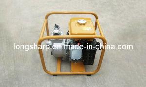 Benzin-Wasser-Pumpen Ls 4131