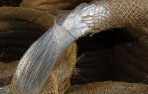 Menor preço por grosso de arame de ferro galvanizado