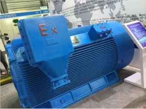 Yb2 Explosion-Proof moteur haute tension 6 kv