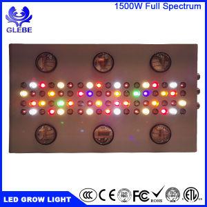 Levou crescer todo o espectro de luz para iluminação de certificação ETL Hidroponia Estufa Interior / Jardim plantas cultivadas 1000W