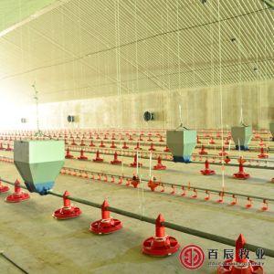 De volledige Vastgestelde Apparatuur van het Landbouwbedrijf van het Gevogelte voor Grills