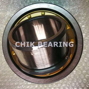 Pezzi meccanici di alta qualità del cuscinetto a rullo cilindrico (EM NU1014)