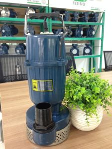 Qdxの農場Irrgation 0.5 HPの浸水許容の電気水ポンプ